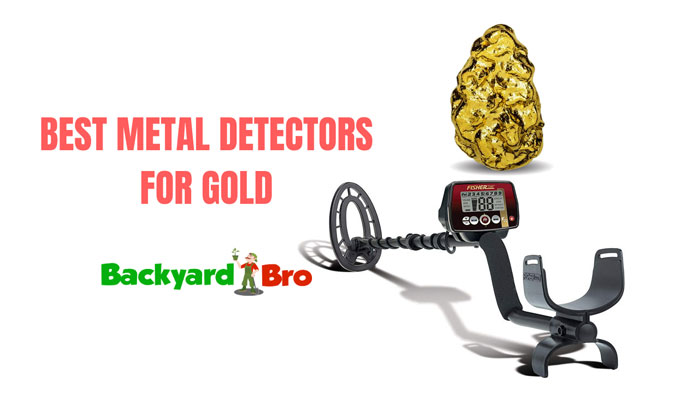 Top Best Metal Detectors for Gold Nuggets 2020